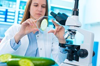 checking food on the content herbicides and pesticides